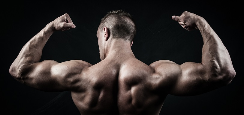 10 best exercises to do at home for building muscle